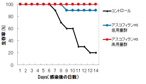 肺炎感染マウス生存率